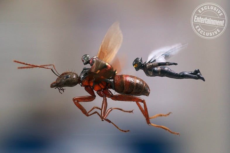 Ant-Man-and-The-Wasp-Ant-Man-and-Wasp-flying