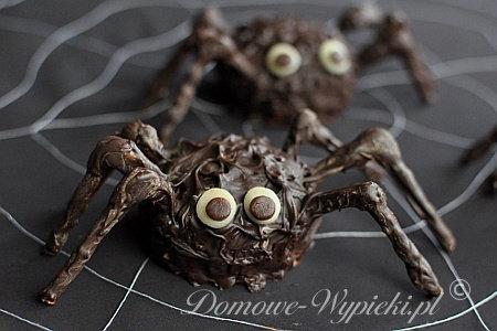 pająki2