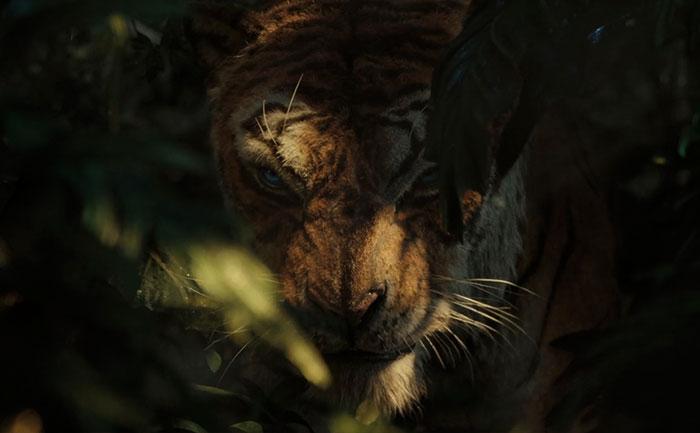 Mowgli5