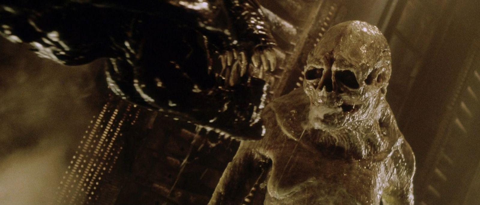 Obcy Alien Quiz (6)